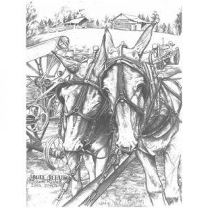 Mule Affair