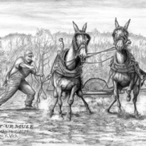 Git Up Mule